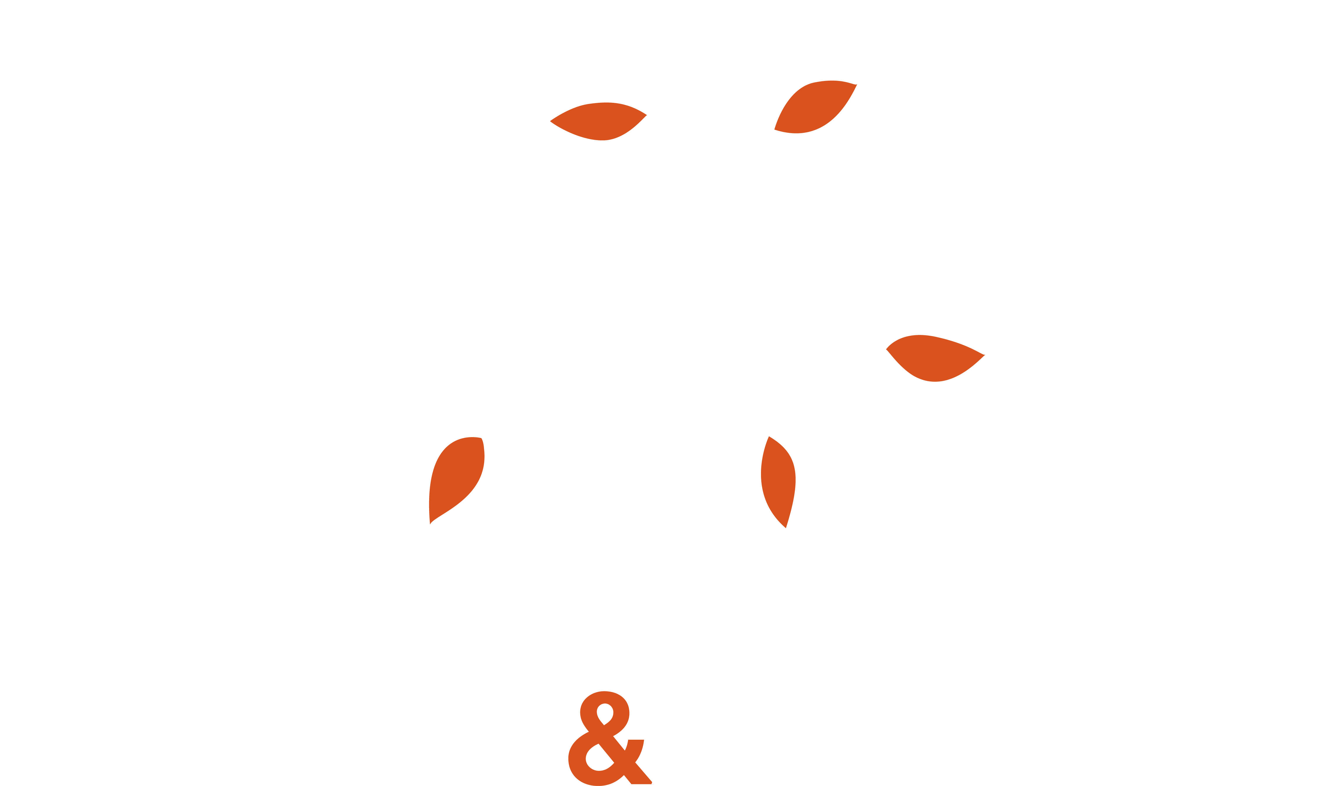Wiseman and Associates